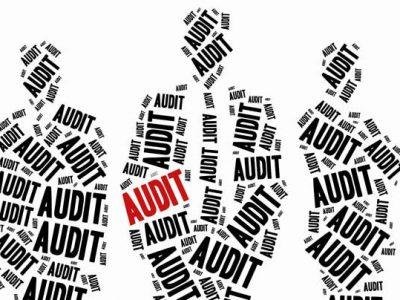 Audit people