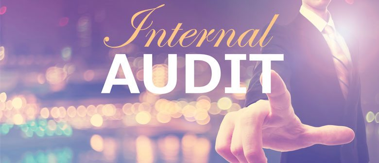 Internal Audits - Cerini & Associates, LLP