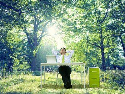Business man enjoying nature