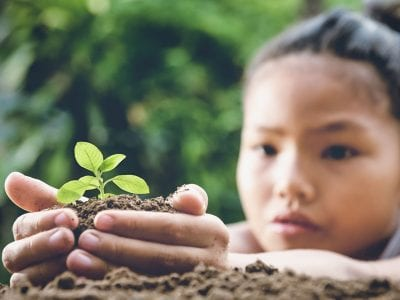 Young child planting small sprout in soil